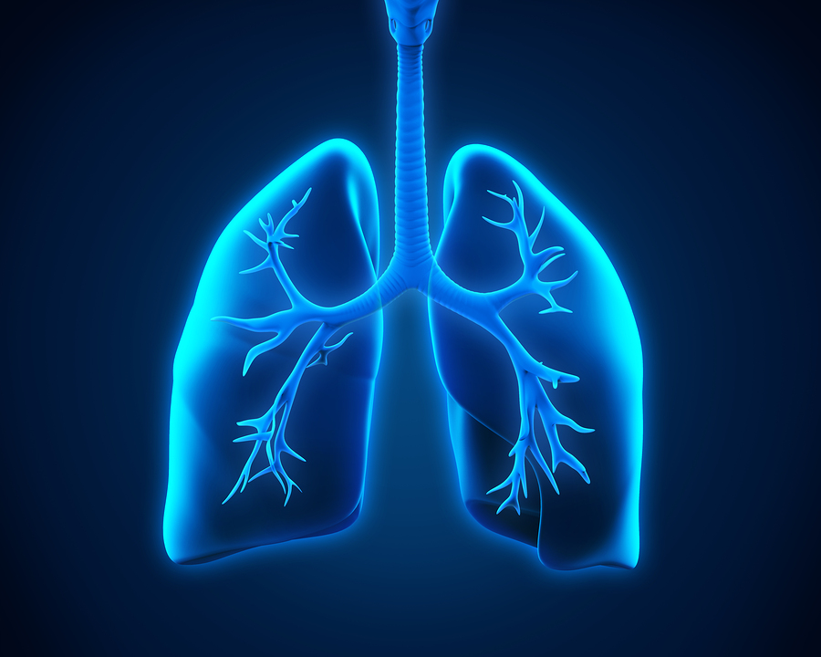 Senior Care in Broomall PA: Risk Factors for Pneumonia