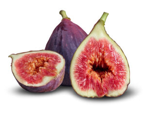 Homecare in Ardmore PA: National Fig Newton Day